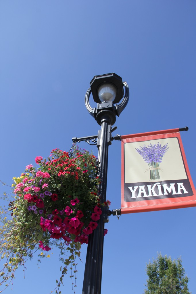 Light poles along Yakima Avenue are full of color with the return of flower baskets and new banners to Downtown.