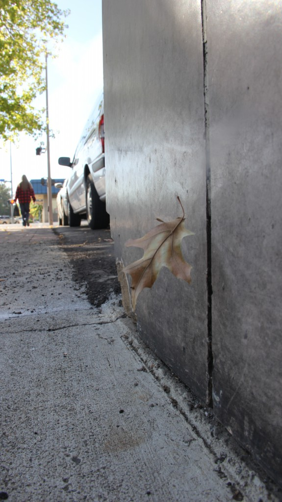 An autumn leaf slowly floats to the sidewalk on 2nd street as signs of fall start to show up around the Valley.