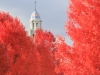 St. Paul\'s Cathedral in the Fall